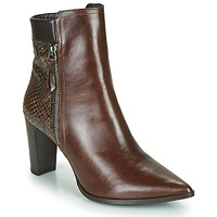Shoes Women Ankle boots Perlato JAMIKONE Brown