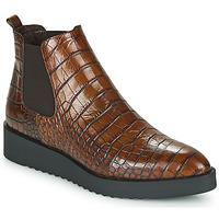 Shoes Women Mid boots Perlato JAMINO Brown