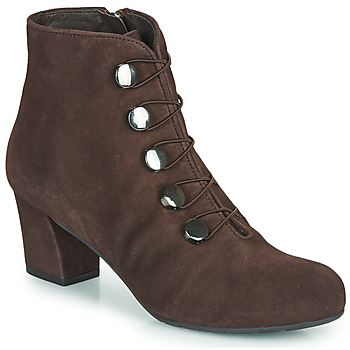 Shoes Women Ankle boots Perlato JAMOVE Brown