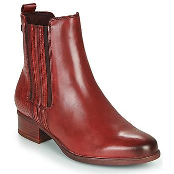 Shoes Women Ankle boots Tamaris MARLY Bordeaux