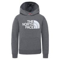 material Children sweaters The North Face DREW PEAK HOODIE Grey