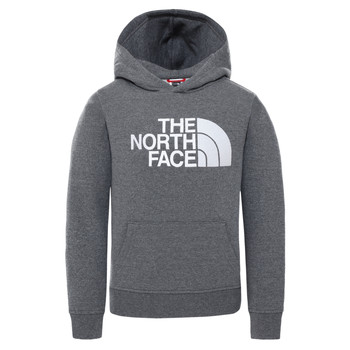 material Children sweaters The North Face DREW PEAK HOODIE Grey