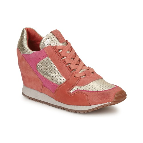Trainers Ash DEAN BIS GOLD / CORAL / Pink 350x350