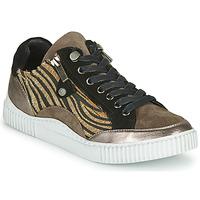 Shoes Women Low top trainers Regard IDEM V6 CRIS TAUPE Brown