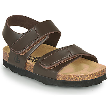 Shoes Boy Sandals Citrouille et Compagnie BELLI JOE Brown