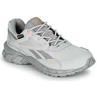 Shoes Low top trainers Reebok Classic RIDGERIDER 5 GTX Grey