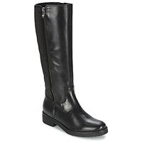 Shoes Women Boots Tosca Blu ABELLINUM Black