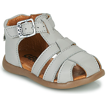 Shoes Boy Sandals GBB FARIGOU Vte / Grey