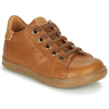 Shoes Boy Low top trainers Little Mary DUSTIN Cognac