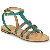 Shoes Women Sandals Geox D SOZY Blue / Brown