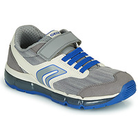 Shoes Boy Low top trainers Geox ANDROID GARÇON Grey / Blue