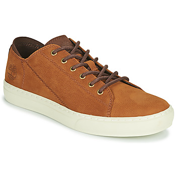 Shoes Men Low top trainers Timberland ADV 2.0 CUPSOLE MODERN OX Cognac
