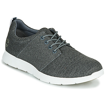 Shoes Men Low top trainers Timberland KILLINGTON FLEXIKNIT OX Grey