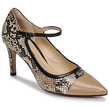 Shoes Women Court shoes Perlato 11765-VENUS-CASTORO-PYTHON-NATUREL Python / Natural