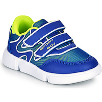 Shoes Boy Low top trainers Chicco CREMISI Blue / Green