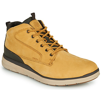 Shoes Men High top trainers Geox U HALLSON Brown