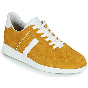 Shoes Men Low top trainers Lloyd BURT Mustard
