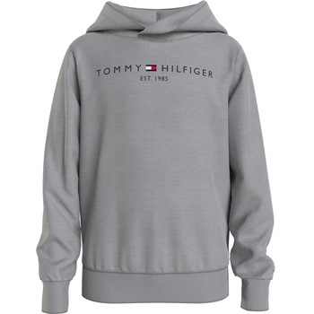 material Boy sweaters Tommy Hilfiger SOAT Grey