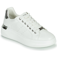 Shoes Women Low top trainers Steve Madden GLACIAL White / Silver