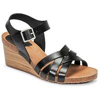 Shoes Women Sandals Kickers SOLYNIA Black