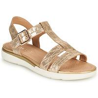 Shoes Women Sandals Geox D SANDAL HIVER B Gold