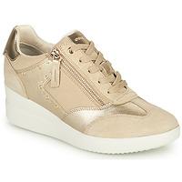 Shoes Women High top trainers Geox D STARDUST B Beige