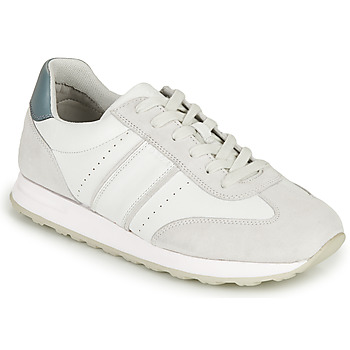 Shoes Men Low top trainers Geox U FIDENZA B White / Blue