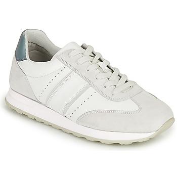 Shoes Men Low top trainers Geox U FIDENZA B White / Blue