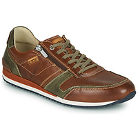 Shoes Men Low top trainers Pikolinos LIVERPOOL M2A Brown