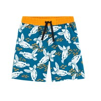 material Boy Trunks / Swim shorts Petit Bateau MARCELO Multicolour