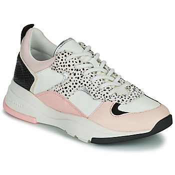 Shoes Women Low top trainers Ted Baker IZSLA White / Pink
