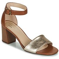 Shoes Women Sandals Clarks JOCELYNNE CAM Brown / Silver