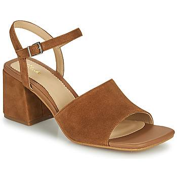 Shoes Women Sandals Clarks SHEER65 BLOCK Camel