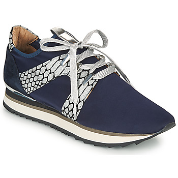 Shoes Women Low top trainers Adige XAN V4 KOI SILVER Blue