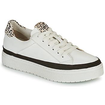 Shoes Women Low top trainers Regard HENIN White / Black