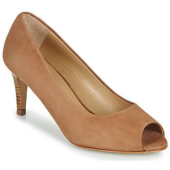 Shoes Women Court shoes JB Martin PARMINA Brown