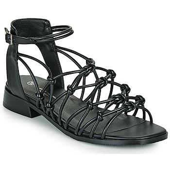 Shoes Women Sandals The Divine Factory LS1793H Black