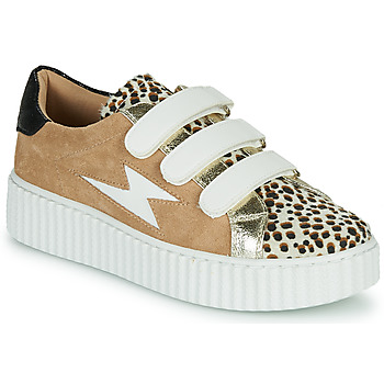 Shoes Women Low top trainers Vanessa Wu BK2206LP Beige / Leopard