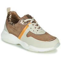 Shoes Women Low top trainers JB Martin WILO Brown