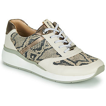 Shoes Girl High top trainers JB Martin 1KALIO Beige