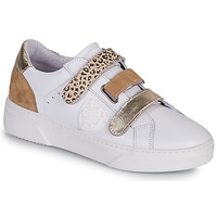 Shoes Women Low top trainers Philippe Morvan STEP V1 White / Brown