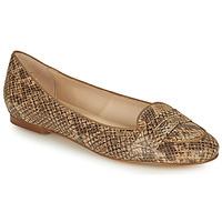 Shoes Women Ballerinas Betty London OVINOU Taupe