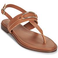 Shoes Women Sandals Minelli LIZA Brown
