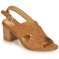 Shoes Women Sandals Minelli CASIMIERA Brown