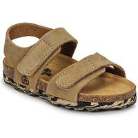 Shoes Boy Sandals Citrouille et Compagnie BELLI JOE Beige
