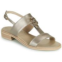 Shoes Women Sandals NeroGiardini PLUIE Gold