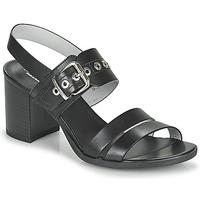 Shoes Women Sandals NeroGiardini GHILLO Black