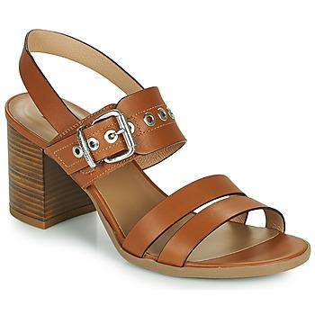 Shoes Women Sandals NeroGiardini GHILLO Cognac
