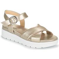 Shoes Women Sandals NeroGiardini LONELESS Gold