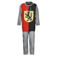 material Men Fancy Dress Fun Costumes COSTUME ADULTE SIR GAWAIN Multicolour